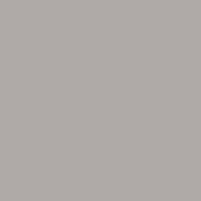 Laccato opaco tortora S05